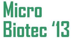 micro13
