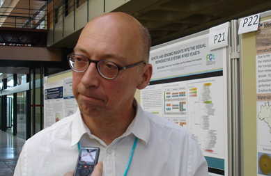 José Paulo Sampaio, Professor Associado Faculdade de Ciências e Tecnologia, Universidade Nova de Lisboa.