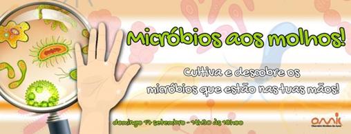 microday12